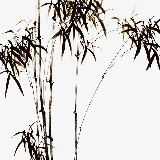 彩铅竹子画法步骤图