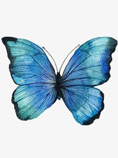 古风手绘蓝绿色蝴蝶