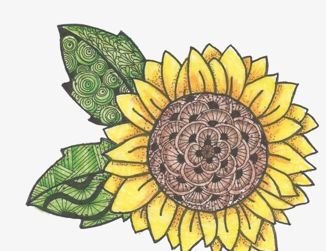 手绘卡通_水彩手绘向日葵png素材-90设计