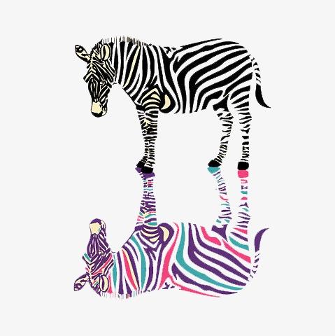 提供高清png手绘动漫素材免费下载,本次斑马与倒影作品为设计师吖头