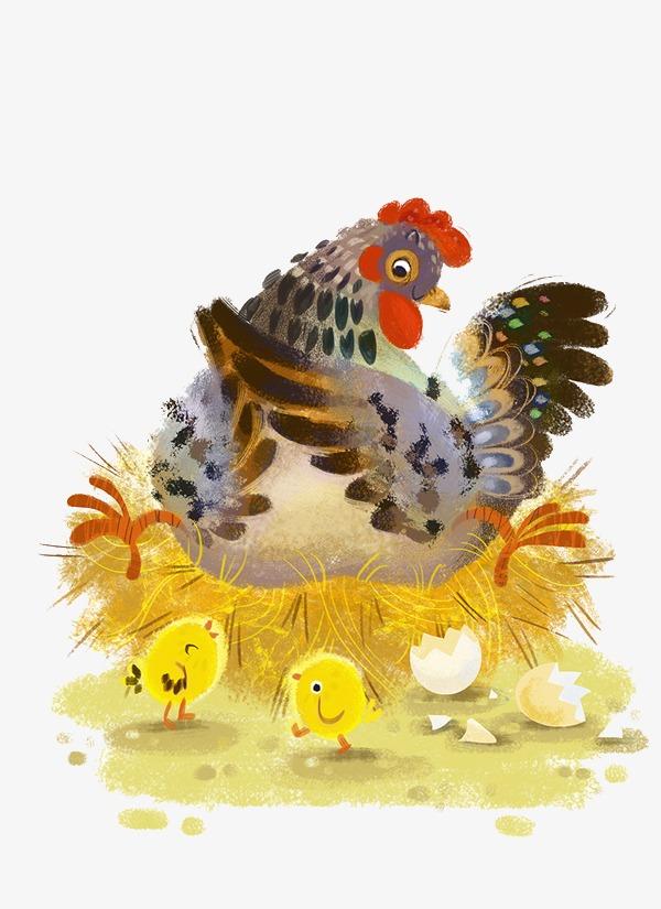 手绘卡通孵蛋的母鸡素材图片免费下载 高清卡通手绘png 千库网 图片编号4006188