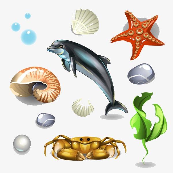 卡通贝壳海鲜类