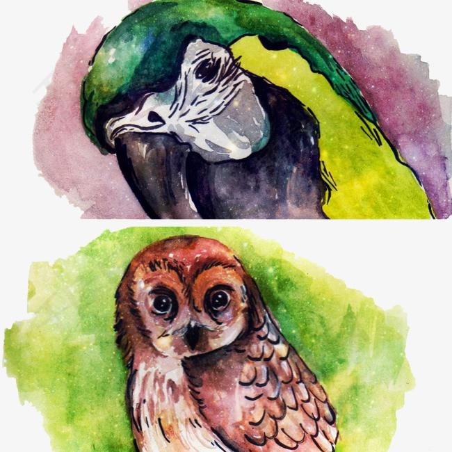 创意水彩手绘鸟儿素材图片免费下载_高清装饰图案psd