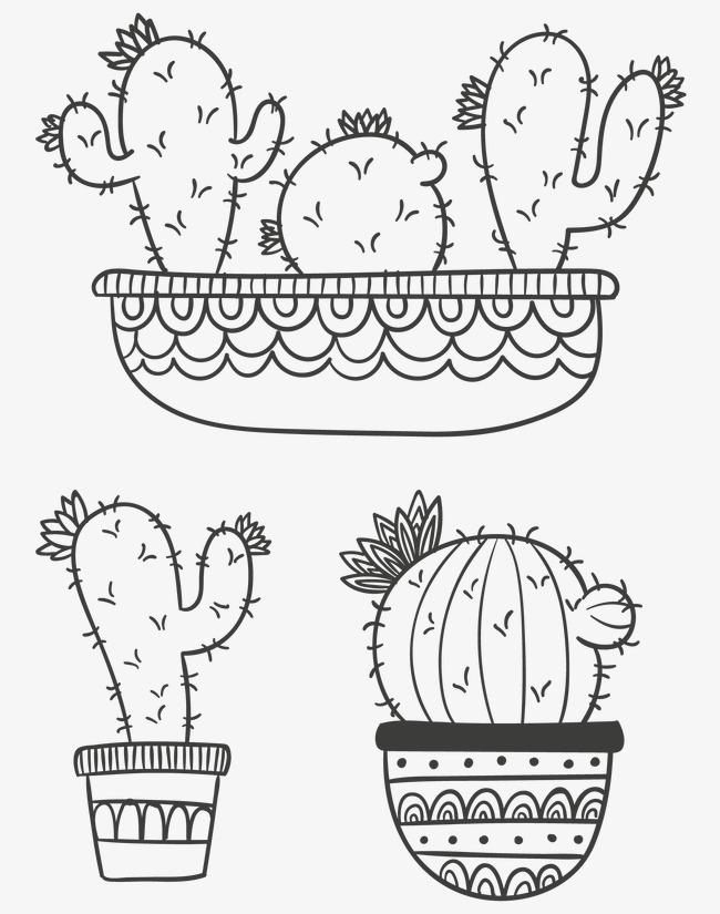手绘植物仙人掌花花盆绘画手绘植物手工可爱的植物盆栽可爱手工绘图绘制线描线稿花朵绿植仙人掌仙人球多形态的仙人掌绘本插图儿童简笔画儿童读物手工绘制