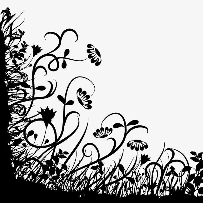 黑白植物边框