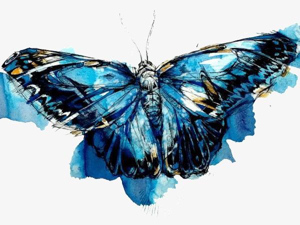创意蝴蝶水彩画