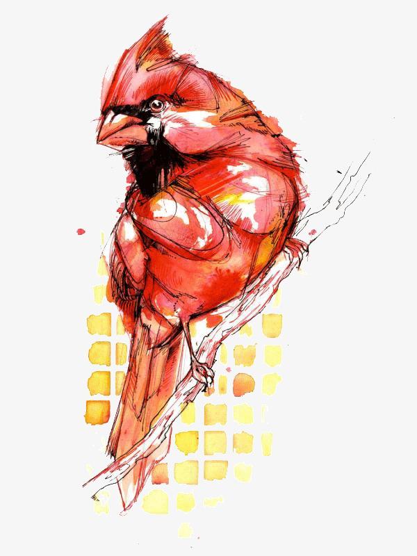 创意设计小鸟水彩画