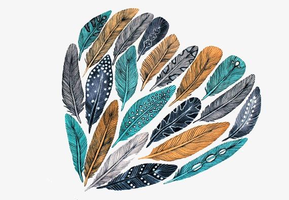 艺术唯美手绘羽毛