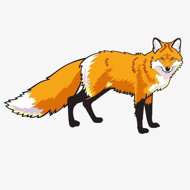 狐狸清新彩铅手绘