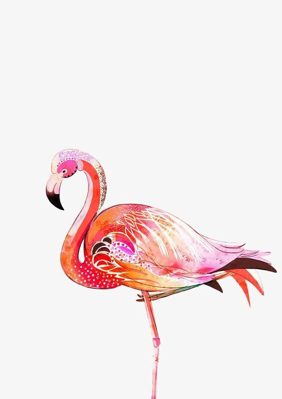 图片 火烈鸟睫毛膏 > 【png】 火烈鸟  分类:手绘动漫 类目:其他 格式