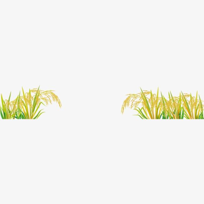 卡通手绘金黄色水稻矢量素材