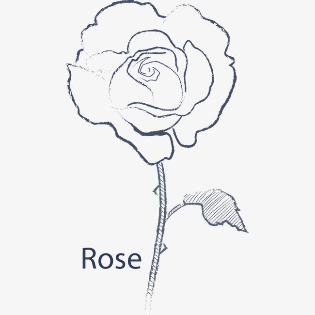 手绘线条玫瑰花矢量素材