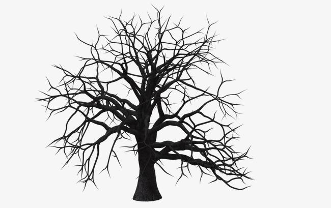 插画枯树枝素材图片免费下载 高清装饰图案png 千库网 图片编号4149814