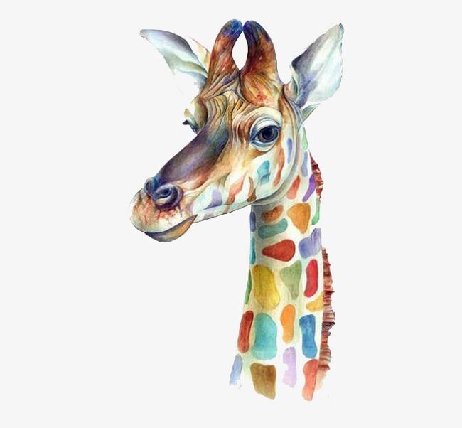 彩绘长颈鹿头像