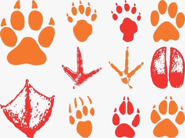 矢量动物脚印
