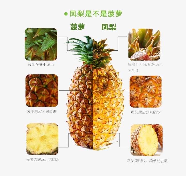 菠萝凤梨详情页说明