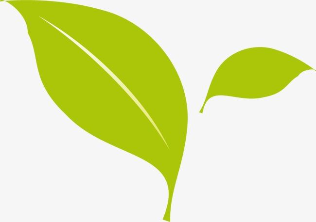 树叶绿色植物布局两个创意素材png图标-90v树叶cad详解矢量平面室内设计图片