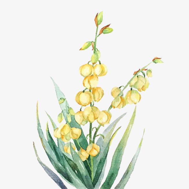 唯美手绘鲜花