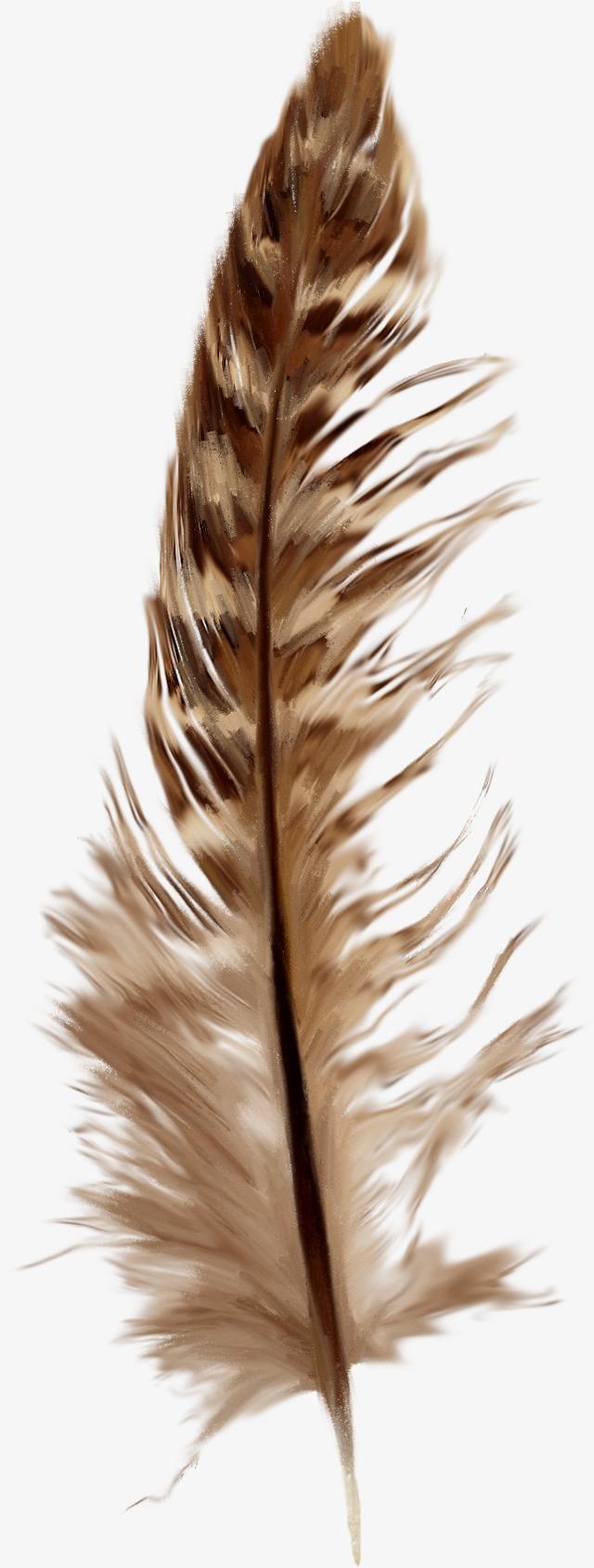 棕色创意羽毛