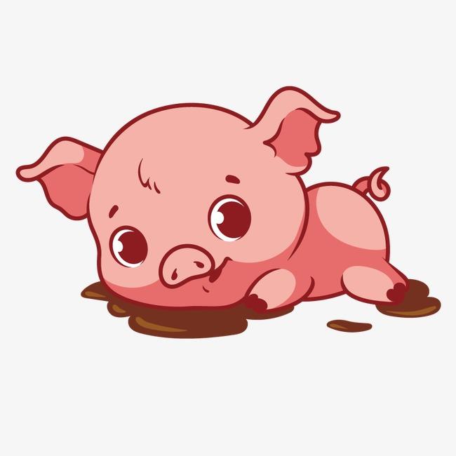 矢量可爱小猪