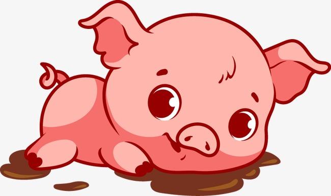 矢量卡通猪