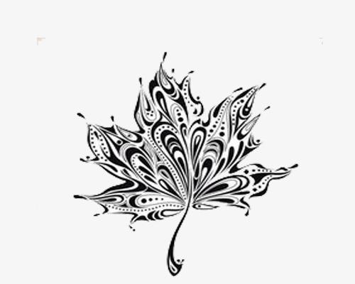 黑白简约 个性手绘元素 枫叶