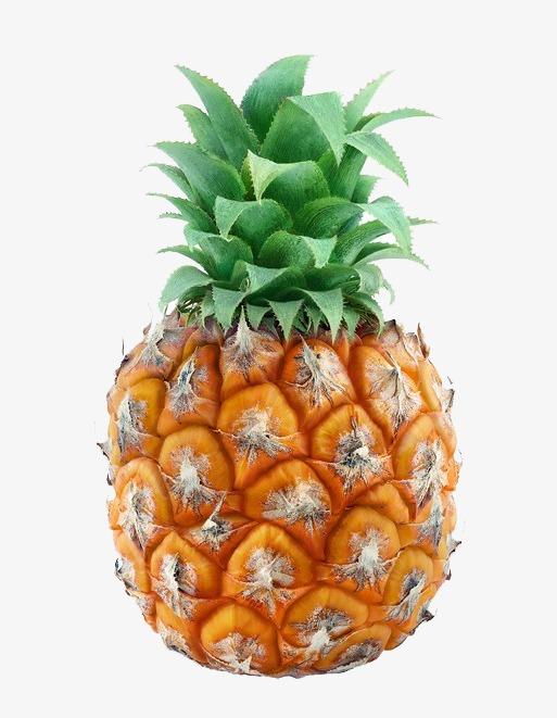 菠萝保险盒图解