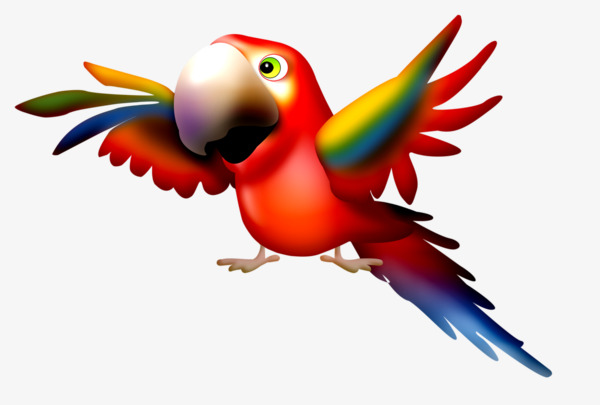图片 > 【png】 卡通小鹦鹉  分类:手绘动漫 类目:其他 格式:png 体积