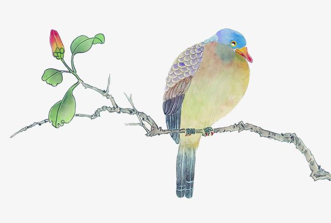 图片 > 【png】 手绘枝头鸟儿
