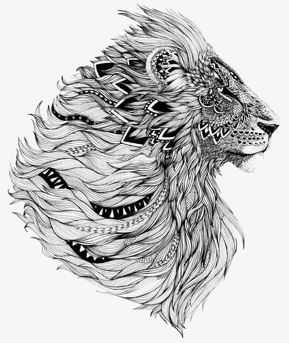 狮子张嘴侧脸手绘