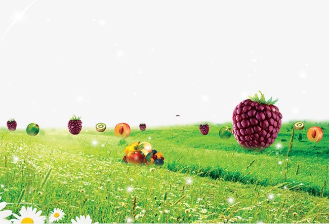 创意绿色草地上的水果