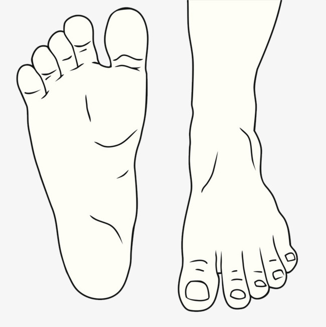 點擊右側免費下載按鈕可進行 線描的腳 腳趾頭 走路的腳掌 邁開的腳步圖片