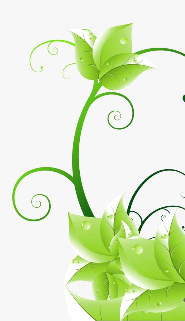 矢量手绘绿色藤蔓树叶