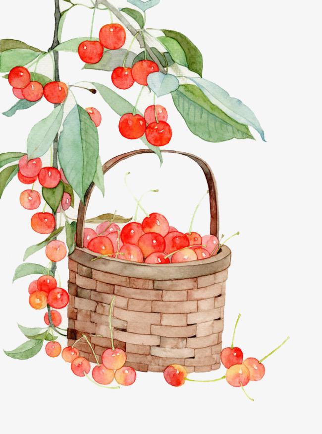 手绘红色樱桃