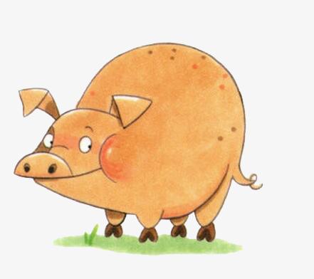 呆萌大肚猪
