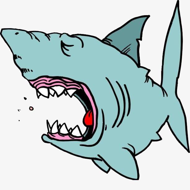 卡通手绘鲨鱼