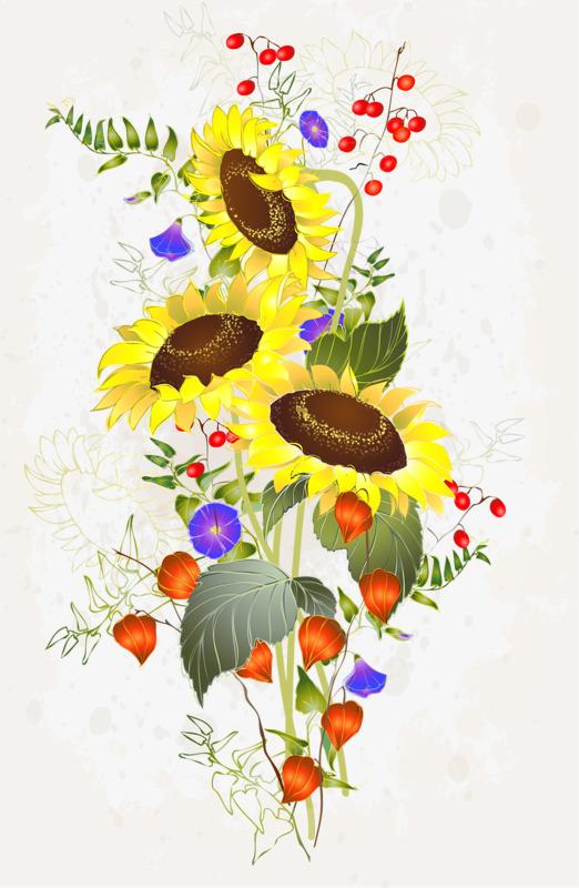 图片 卡通向日葵 > 【png】 向日葵  分类:手绘动漫 类目:其他 格式:p