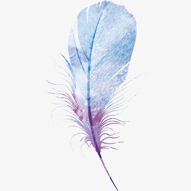 手绘水彩单只唯美羽毛