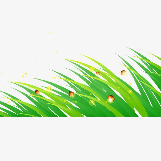 图片 > 【png】 卡通小草萤火虫  分类:手绘动漫 类目:其他 格式:png