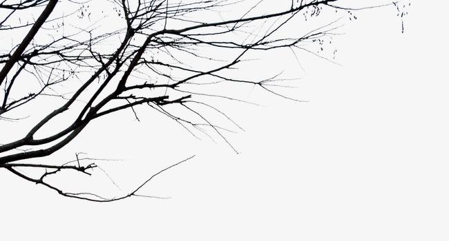 老树枝附魔师要设计图图片