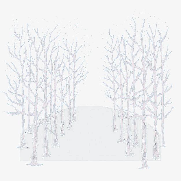 杨树手绘图片大全