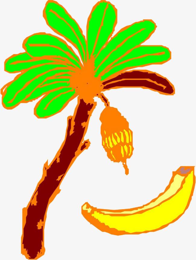 香蕉树香蕉手绘线描插画香蕉线描手绘简约卡通-香蕉树香蕉手绘线描