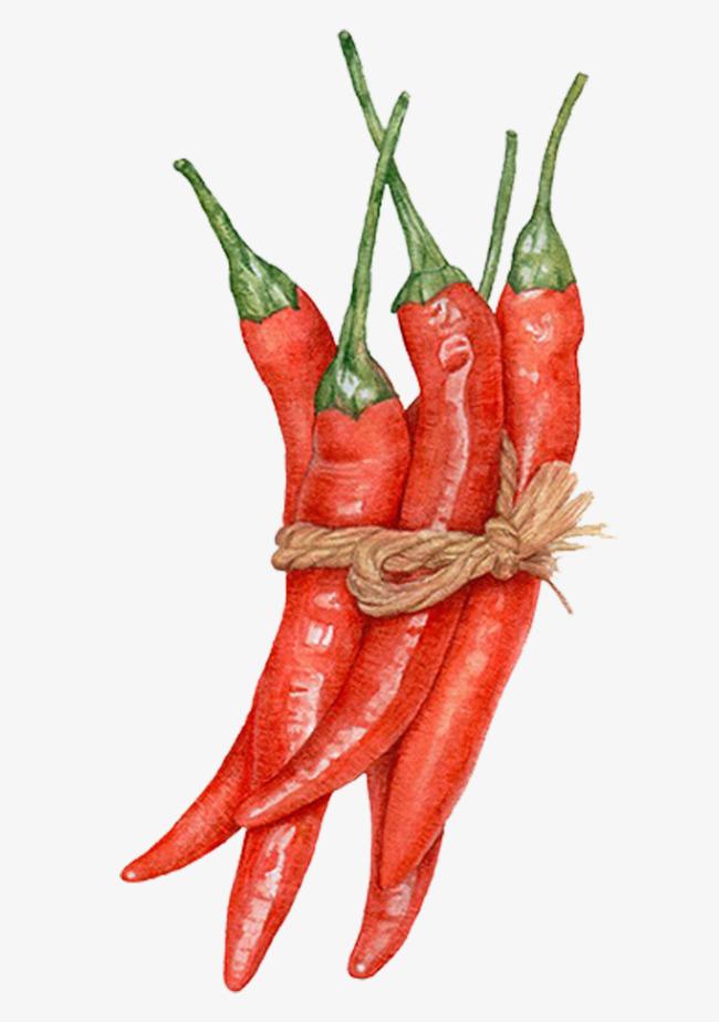 手绘红辣椒