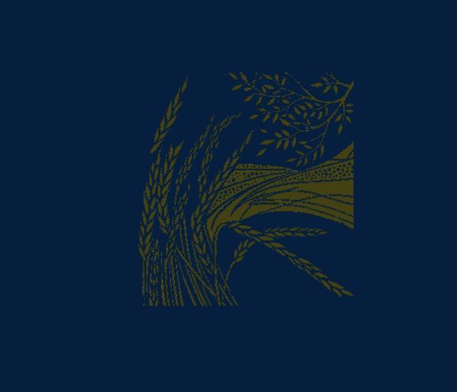 飘逸的麦穗柳树和田地