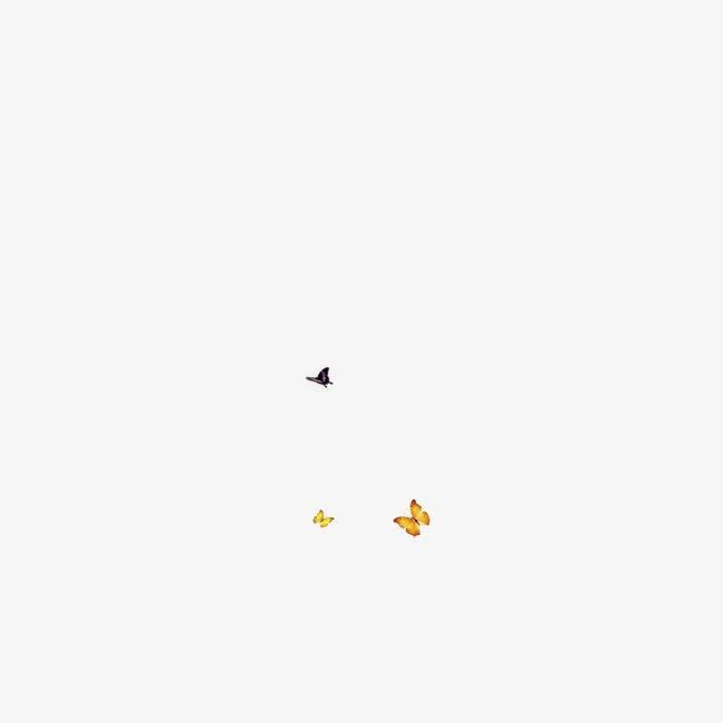 中国风 工笔 飞舞 蝴蝶素材图片免费下载 高清装饰图案png 千库网 图片