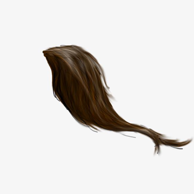 动物的尾巴
