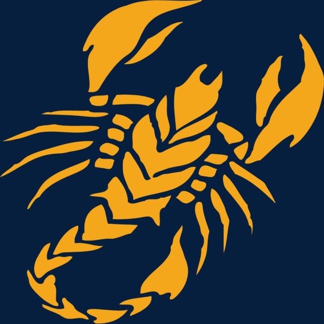 蝎子手绘图案