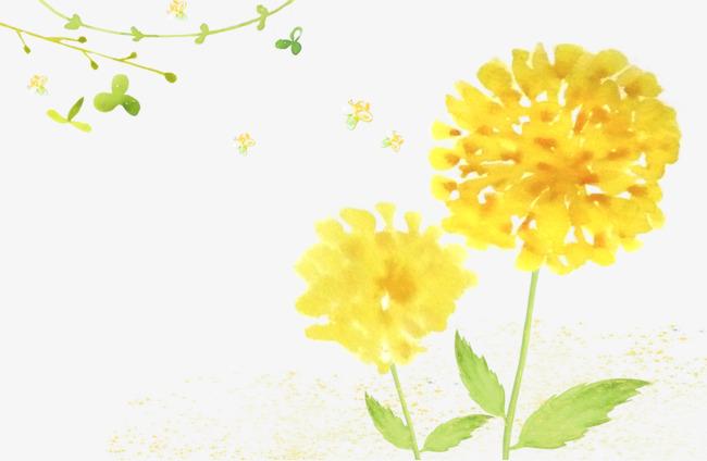 手绘小黄花