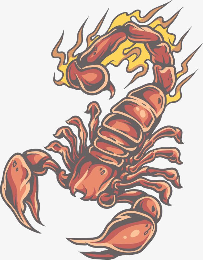 手绘蝎子图片