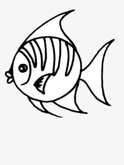 海洋热带鱼简笔画